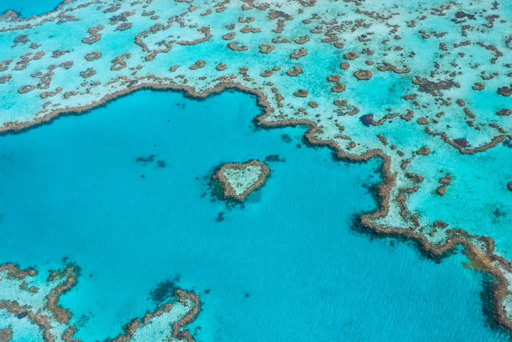 Heart Reef Express Scenic Tour